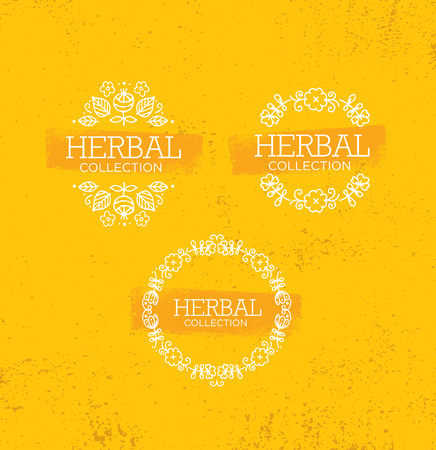 Herbal Collection Boutique. Handmade Organic Beauty Product Creative Design. Elegant Illustration On Rough Background