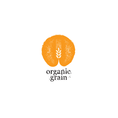 Agriculture Organic Grain Rough Vector Illustration Template  イラスト・ベクター素材