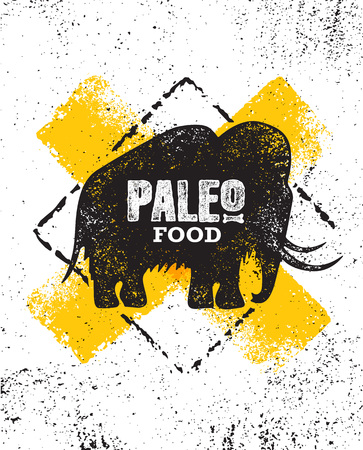 Paleo Food Diet Primal Nutrition Organic Wholesome Illustration Concept On Rough Wall Background. Mammoth Vector Sign. Stock Photo