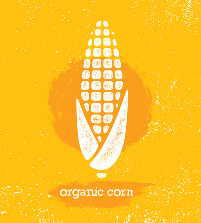 Organic Sweet Corn On The Cob Creative Vector Design Element For Menu Design. Healthy Food Illustration Concept On Textured Background.