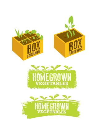 Box Gardening Sign Concept. Homegrown Vegetables Illustration. Craft Food Vector Design Element On Painted Wall Background