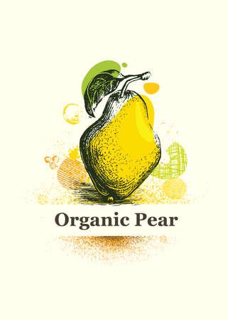 Organic Pear. Fresh Local Farm Fruit Artistic Illustration