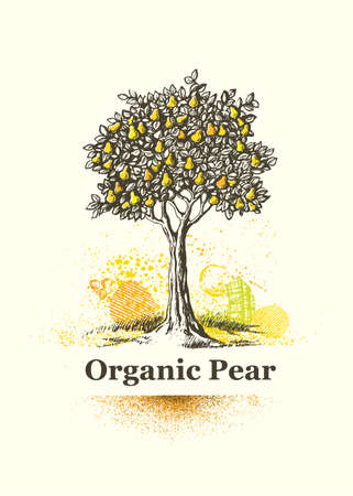Organic Pear Tree Sign. Fresh Local Farm Fruit Artistic Illustration