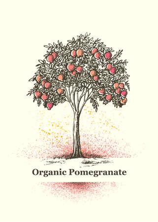 Organic Pomegranate Tree Sign. Fresh Juice Local Farm Fruit Artistic Illustration