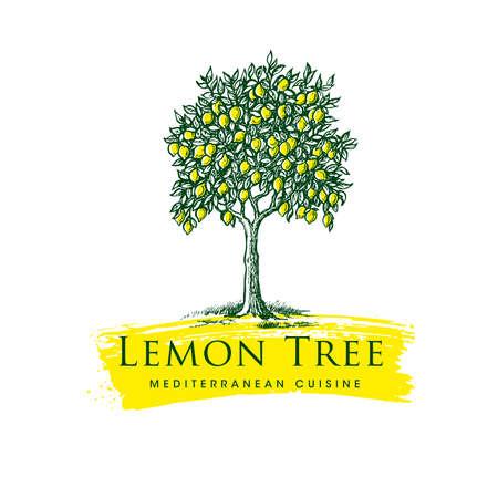 Lemon Tree Mediterranean Cuisine Organic Handmade Sign Concept. Fresh Local Farm Lemonade Fruit Craft Illustration Çizim