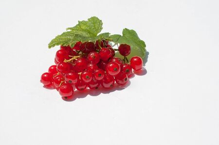 red currant with leaves on a white background in high quality