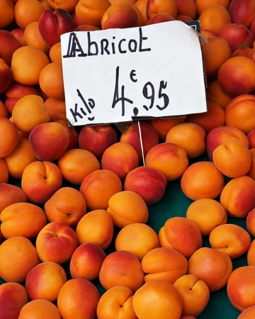 kilo: Fresh apricots at an outdoor market in France