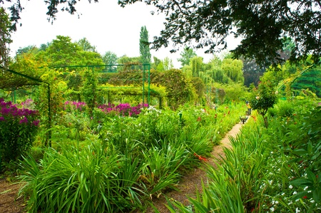 lush foliage: Monet