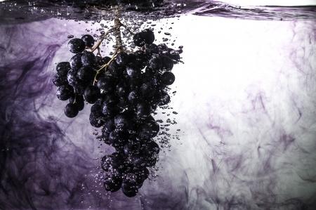 sultana: Grape-1,sultana in water   Stock Photo