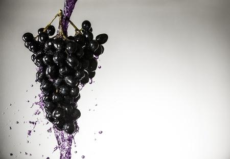 sultana: Grape-4, sultana with violet splash