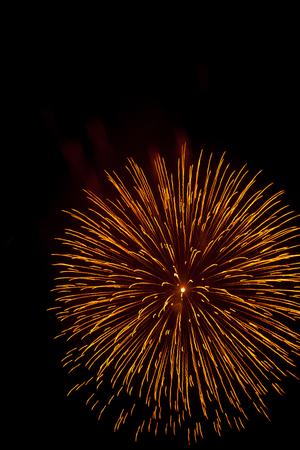 Celebration fireworks. Fireworks light up the sky.