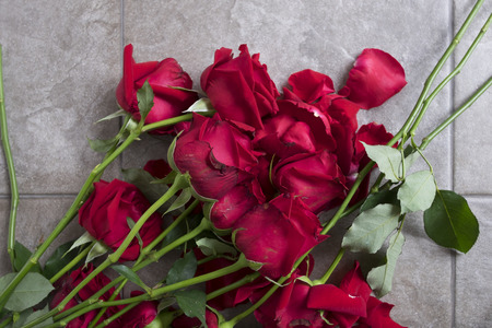 Red rose is sear on floor. Red Roses are abandoned. Reklamní fotografie