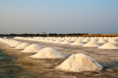 Salt farm on samutsakorn,Thailand Stock Photo