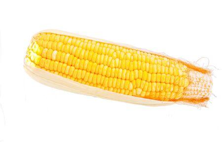 yellow corn on white background Stock Photo - 13907125