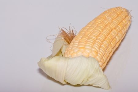 raw corn on white background photo