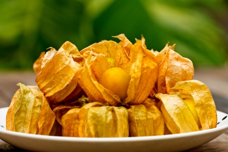 Cape gooseberrys  on plate Stock Photo - 18458289