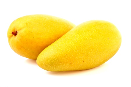 yellow mango  in isolated  on white background