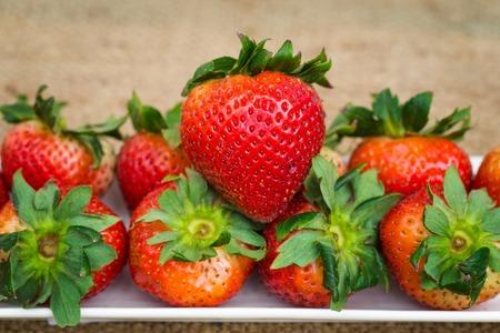 strawberrys: Strawberrys in long plate  on hemp sheet Stock Photo