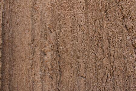 dirt: Dirt background texture