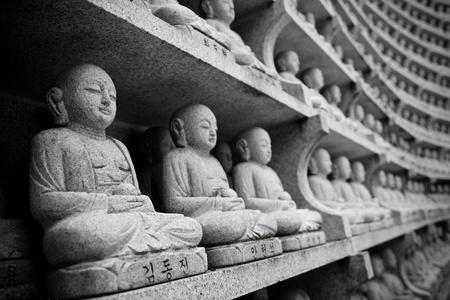 millions: A millions of little Buddha
