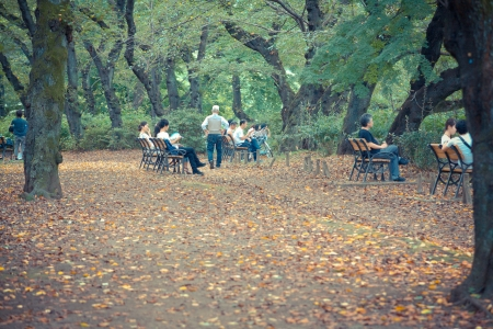 Japanese people siting for relaxing in Inokashira park ,Japan