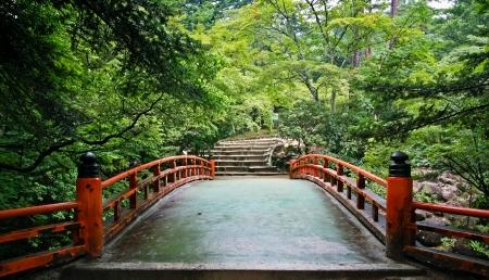 Red Bridge in the maple forest at Miyajima island in Hiroshima, Japan
