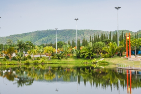 Lake and greenery garden in the Royal park at Chaingmai Thailand