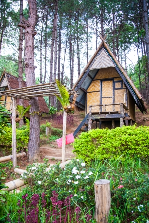 Bamboo hut in the pine forest for resting and relaxing in Maehongson province, Thailand