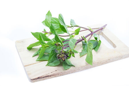 favoring: Sweet Basil on wood chopping board on a white background