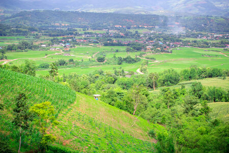Natural landscape view of village and corn filed on mountain at Chiangmai, Thailand photo