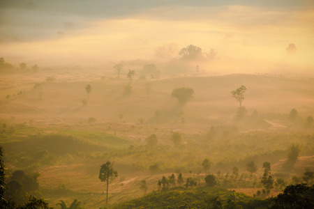 unclear: Natural sceneof sun rise with unclear foggy on mountain area intheNorthern of Thailad