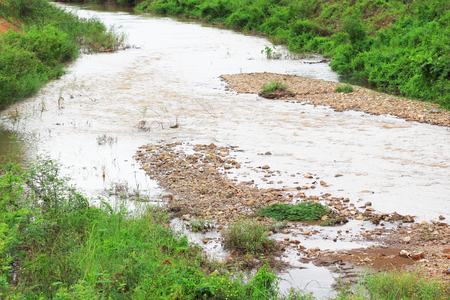 vegatation: Natural water reservior run almost dry in drough season in Thailand