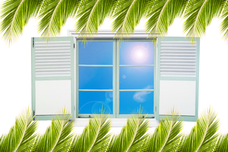isolation: Tropical concept window isolation on white and coconut leaf frame