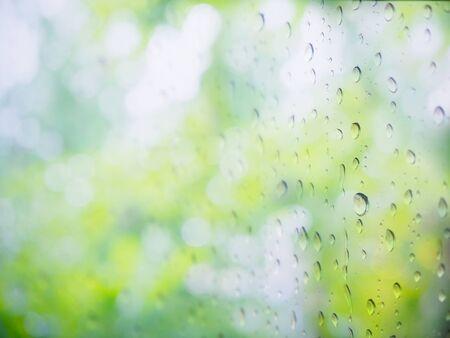 kropla deszczu: Zielona naturalnych abstrakcyjne tło z kropli deszczu