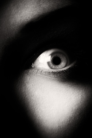 eye. shallow depth of field. focus on the eyeball. black and white photo