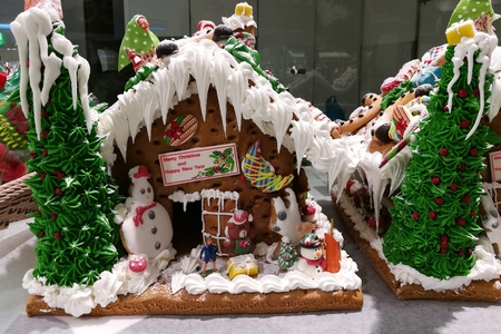 plan éloigné: Merry Christmas and Happy New Year, homemade icing house cookies with Santa, reindeer snowman and friend (long shot house1)