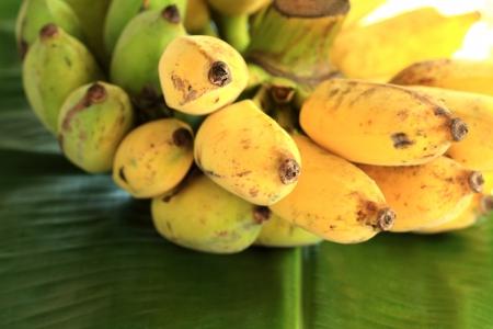 Thai banana  photo