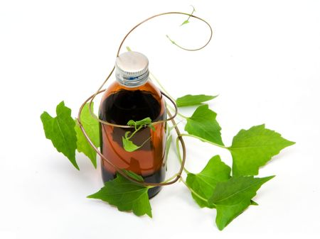 elixir: Las hierbas medicinales - 01
