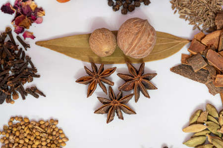 Different spices and herbs in a plate, close up, top view. Assortment colorful spices, seeds and herbs for cooking biriyani. Foto de archivo