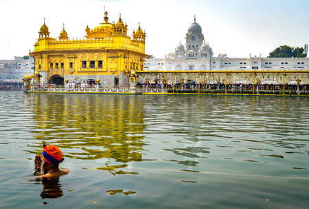 A sikh is praying in the holi water of Golden Temple Amritsar India Stok Fotoğraf - 98960464