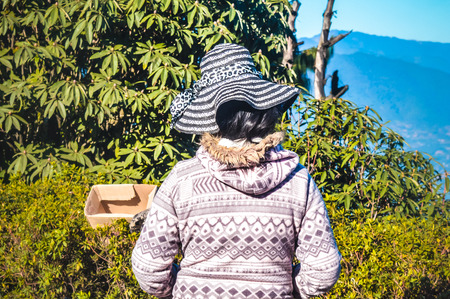 Amazing girl posing with long hair folded and wearing wearing warm knit pullover and hat, in cold winter day. Portrait from back. Outdoor photography. Imagens
