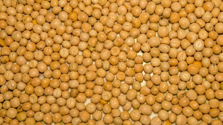 Close up pile of yellow gram flour beans texture, background pattern. Natural grains and cereals. Agricultural product concept. Seamless colorful canvas. Studio shot. Copy space room for text.Top view