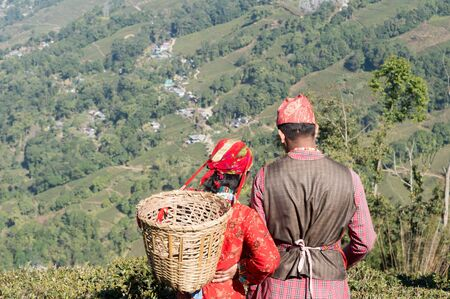 Beautiful young couple in love. Indian tea puckers, romantic couple woman and man caught in summer time in a mountain terrace tea garden on May Day - International Workers Day. Assam Darjeeling India. Stok Fotoğraf