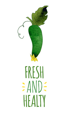 healty: Fresh and healty cucumber.Colorful hand drawn vector ilustration Illustration