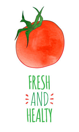 healty: Fresh and healty tomato.Colorful hand drawn vector ilustration
