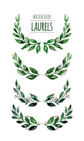 ornamental borders: Watercolor hand drawn laurels.Colorful vector illustration isolated on white background