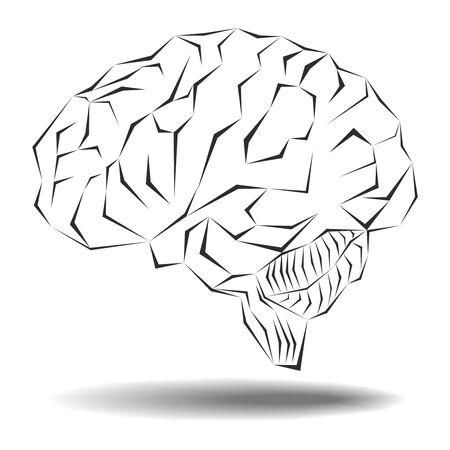 Angular geometric representation of the human brain photo