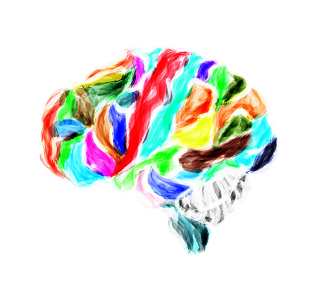 meanders: Multicolored human brain painted with watercolors. Vector illustration