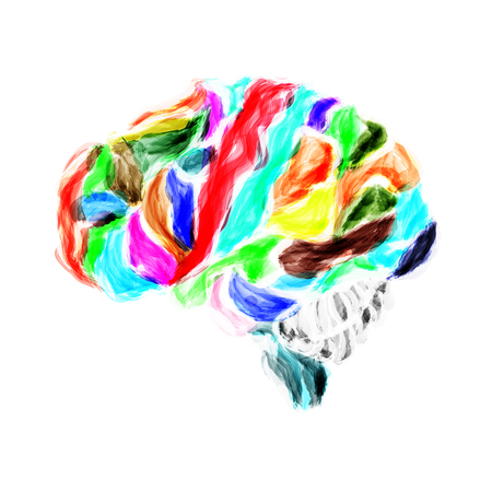 meanders: Multicolored human brain painted with watercolors