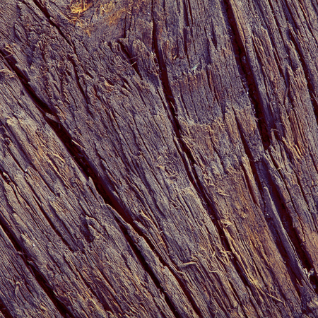Wooden board in brown tones close up photo